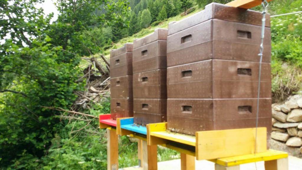 Bienenstand Nr. 01
